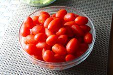 Free Tomatoes Stock Photos - 19294653