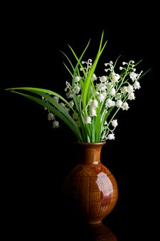 Free Snowdrops In A Vase Stock Photo - 19295750