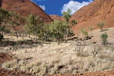 Free Colors Of Australian Outback During Winter Season Stock Photography - 19296472