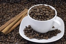 Free Coffee Bean Royalty Free Stock Photography - 19297087