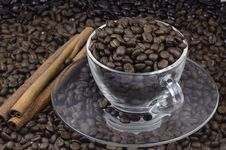Free Coffee Bean Stock Photos - 19297143