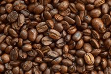 Free Coffee Beans Texture Royalty Free Stock Photography - 1931827