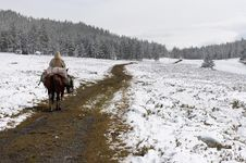 Free Winter Road And Horseman. Stock Photo - 1933890