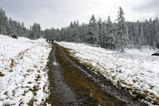 Free White Wood, Road And Snow. Royalty Free Stock Photos - 1933898