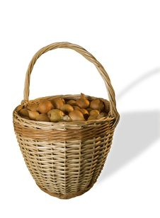 Free Onion Basket Royalty Free Stock Photo - 1937405