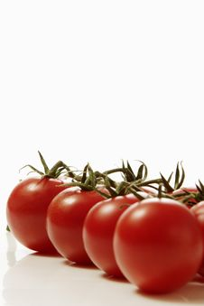 Free Red Tomatoes Stock Photos - 1937523