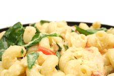 Free Pasta Salad With Copyspace Stock Photography - 1938282
