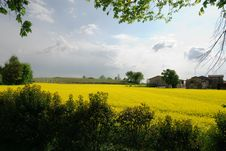 Free Landscape In Spring Royalty Free Stock Photos - 19301018