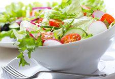 Free Salad Stock Photo - 19301560