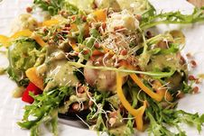 Free Healthy Salad Royalty Free Stock Photo - 19302165
