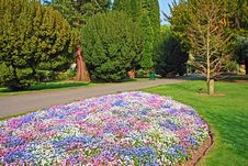 Free Beautiful Park With 3 Colour Flowers Stock Photos - 19305623