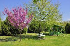 Free Lilac Park Stock Photography - 19307202