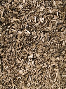 Free Sunny Wooden Chips Royalty Free Stock Images - 19308379