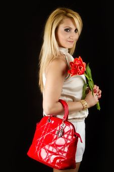 Free Stylish Woman With Red Tulips Royalty Free Stock Photos - 19308808