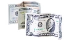 Free American Dollars Royalty Free Stock Photos - 19309988