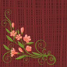 Free Flowers Royalty Free Stock Photos - 19313708
