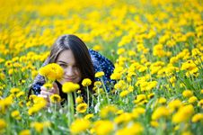 Free Girl In Yellow Flowers Stock Photo - 19316900