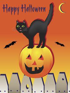Free Happy Halloween Black Cat Stock Photo - 19318050