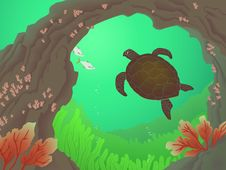 Free Green Turtle Royalty Free Stock Image - 19318426