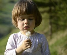 Free Child With A Dandelion Seed Royalty Free Stock Images - 19319589