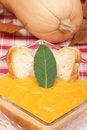 Free Cream Of Squash Soup Royalty Free Stock Photos - 19326908