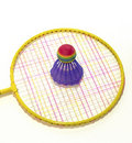 Free Badminton Racket And Shuttlecock Stock Images - 19328064