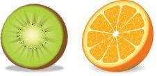 Vector Orange And Kiwi Stock Photos
