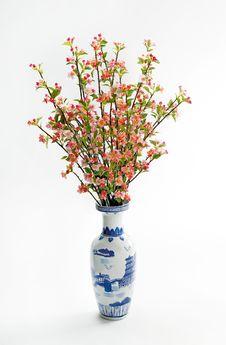 Free Cherry Blossom Stock Photos - 19320743