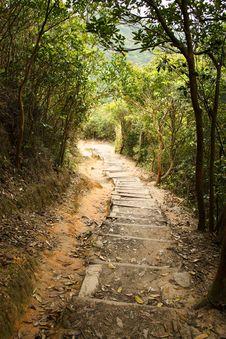 Free Mountain Path Royalty Free Stock Photos - 19323258