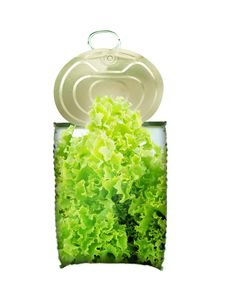 Free Fresh Green Saland In Can Cross-section Royalty Free Stock Photos - 19323318
