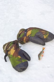 Free Camouflage Mittens And Perch On Snow. Stock Images - 19323364