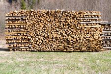 Free Logs Royalty Free Stock Photo - 19323415