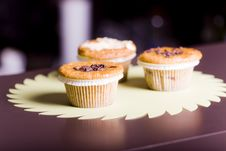 Free Muffins Royalty Free Stock Photo - 19324855