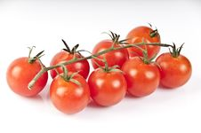 Free Red Tomatoes Royalty Free Stock Photos - 19326118