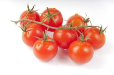 Free Red Tomatoes Stock Photography - 19326142