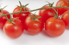 Free Red Tomatoes Royalty Free Stock Image - 19326166