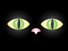 Free Black Cat Stock Images - 19326964