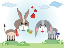 Free Two Donkeys In Love Stock Photos - 19327143