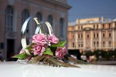 Free Wedding Rings In A Limousine Royalty Free Stock Photography - 19327527