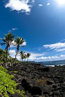 Free Tropical Beach With Ocean Views Stock Photo - 19328210
