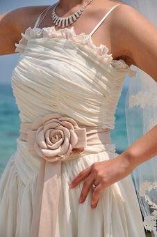 Free Bride In Wedding Dress Stock Photo - 19328390