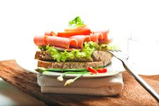 Free Brown Bread With Sausage Royalty Free Stock Photography - 19330287