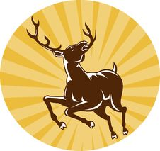 Free Stag Deer Jumping With Sunburst Stock Photos - 19331903