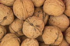 Free Walnuts Background Stock Photos - 19336533