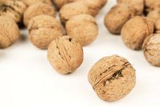 Free Walnuts Close Up Stock Image - 19336541