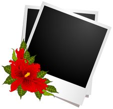 Free Photo Frames With Flowers Royalty Free Stock Images - 19337529