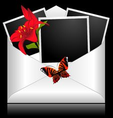 Photo Frames With Flowers Stock Image