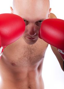Boxer In Defending Position Royalty Free Stock Image
