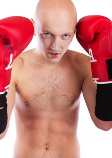 Free Portrait Of Professional Boxer Stock Photos - 19338283