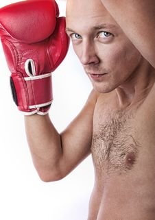 Free Portrait Of Confident Boxer Royalty Free Stock Image - 19338486